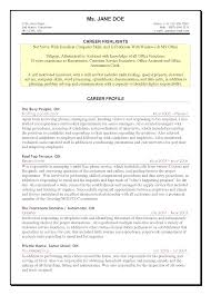 Resume Examples For Computer Skills Resume Online Builder