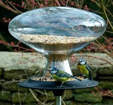 Blue Tits on Glass Bird table by Eva Solo