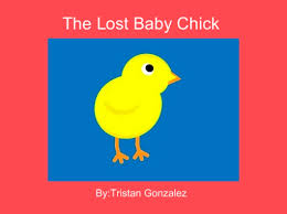 online baby photo book the lost baby chick free books children s stories online