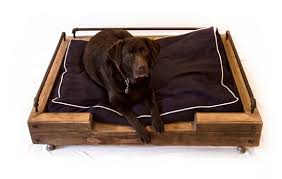 pets furniture. most of the furniture provides pets with comfortable places to rest but some like cat walkways or dog bowls give them functional advantages as