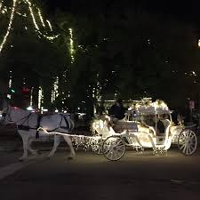 Carriage Lighting Canyon Country Christmas Lights In San Antonio And Beyond Places For Pups