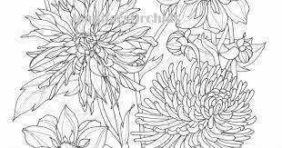 Ima Download Grote Afbeeld Bloemen Kleurplaten Tropicalweather