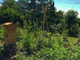 biodynamic gardening. Urban Biodynamic Gardeners Face Special Challenges, Often With Small Spaces, Minimal Sunlight And Limited Ability To Have Animals On The Land. Gardening