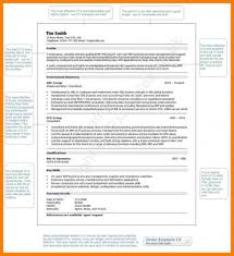 Curriculum Vitae Cv Samples And Writing Tips Example Photo