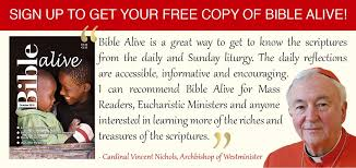 Ba Quote Cool Cardinalbaquotebanner Alive Publishing