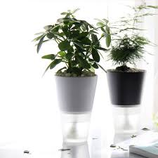 Office pot plants Reception Area Automatic Water Flower Pots Office Ceramic Free Watering Vase Creative Lazy Potted Plants Amazon Uk Automatic Water Flower Pots Office Ceramic Free Watering Vase