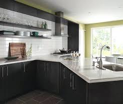 dark gray kitchen cabinets dark gray kitchen cabinets by cabinetry dark gray kitchen cabinets houzz