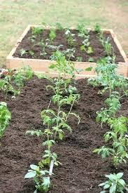 garden irrigation nj. Garden Irrigation Nj System For Raised Bed Starter Kit O