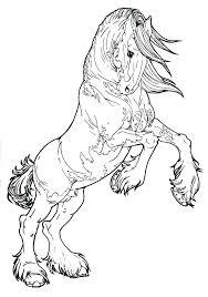 Horse Color Pages