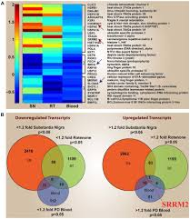 Genesis 1 And 2 Venn Diagram Heat Map And Venn Diagrams Of Differentially Expressed Genes