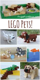 Building Instructions for Dogs, Cats, Guinea Pigs, Lizards, and More!