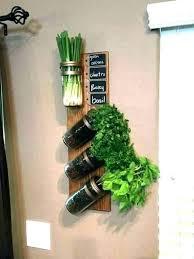 home depot herb garden kit windowsill kitchen hydroponic excellent indoor