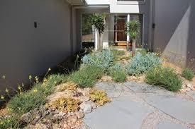Small Picture Succulent gardens Beach Style Brisbane by Cascade Garden Design