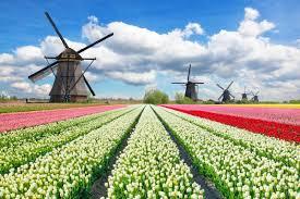 Oftmals spricht man außerhalb der niederlande von holland, das ist aber nur eine der historischen regionen innerhalb der niederlande. Niederlande Holland Gibt Es Nicht Mehr