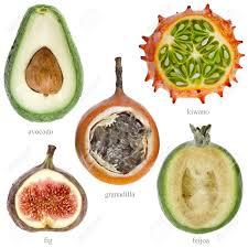 tropical fruit names. Modren Fruit Collection Set Of Half Fresh Exotic Fruits With Names Kiwano For Tropical Fruit Names K