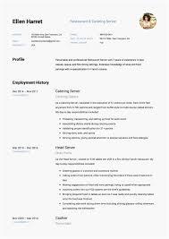resume sample for restaurant server greatest restaurant server resume for each and every type of