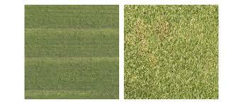 seamless grass texture game. Drawn Lawn Bump Map #3 Seamless Grass Texture Game T