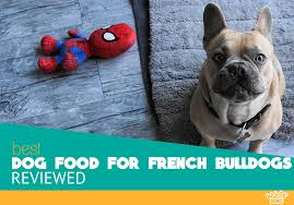 Best Dog Food For French Bulldogs Top 10 Recipes Reviewed