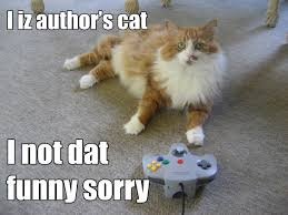 cats and video games a photo essay cat copy jpg