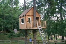 tree house plans for two trees. Modren Trees Two Tree Treehouse House Plans Trees Tremendous 6 Tiny  Masters Tabs And Tree House Plans For Two Trees