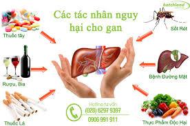 Kết quả hình ảnh cho cách ăn uống cho gan khỏe mạnh