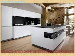 kitchen cabinets kitchen remodel ideas pictures kitchen cabinet
