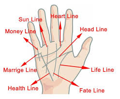 Palm Reading Guide Basics Of Hand Reading To Tell