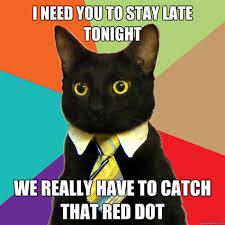 business-cat.jpg via Relatably.com