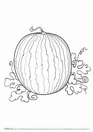 Browse your favorite printable vegetable coloring pages category to color and print and make your own vegetable coloring book. Fruit And Veggie Coloring Pages Unique Free Printable Coloring Pages Moona Fruits And Berries Meriwer Coloring