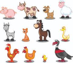 on domestic animals essay on domestic animals