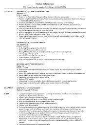 Group Coordinator Resume Samples Velvet Jobs