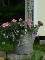 20 Best Spring Container Gardening Images On Pinterest  Flowers Container Garden Design Plans