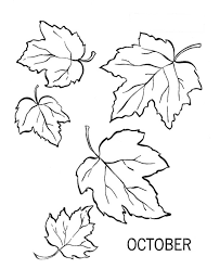 Small Picture Download Printable leaves coloring sheets 14 best photos of
