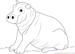 Small Picture Cute Hippopotamus Baby Coloring Page Free Hippopotamus Coloring