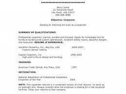 Download Carpenter Resume Objective Haadyaooverbayresort Com