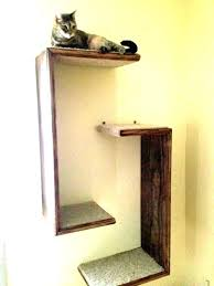 over the door cat tree climber hanging furniture y outdoor for climbing diy plans
