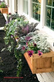 top result diy window planter boxes best of 25 wonderful diy window box planters home design