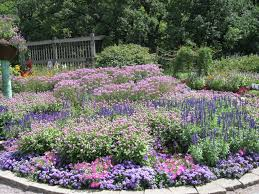 Small Picture Perennial Garden Ideas Zone 5 Garden Plans Zone Neoteric Design
