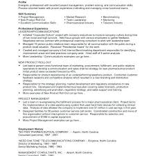 Examples Of Professional Skills Sample Skill Based Resume Professional Skills Examples Skill List