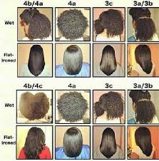 Hair Type Chart For Black Women Black Natural Hair Types