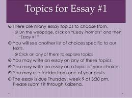 info on essay about boss ga southern application essay pastry topics for essay image