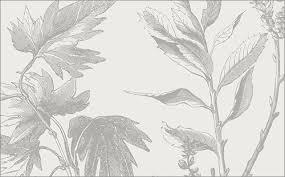 葉っぱや小枝が緻密に描かれたイラスト素材が無料しかもベクター完備は