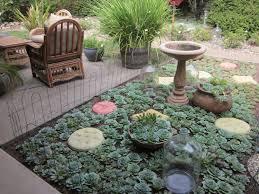 cactus succulent garden shade garden design plans succulent flower bed
