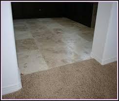 tile to carpet transition doorway