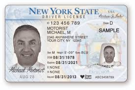 Bendy Killed No-fun Licenses Observer By Dmv New Driver's York