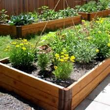 drip system for garden. Garden Bed Drip System For