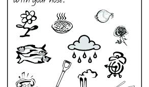Coloring Page 5 Senses My Five Senses Book Printable Coloring Page