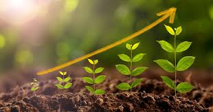 Image result for plant growth-promoting bacteria as inoculants in agricultural soils