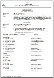 How To Prepare Resume Magnificent How To Make Or Write A CV Professional And Elegant 28 Career
