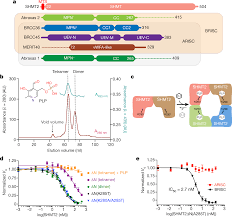 metabolic control of brisc shmt2 assembly regulates immune signalling nature